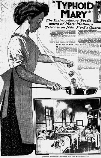 Typhoid Mary article in The New York American June 20 1909